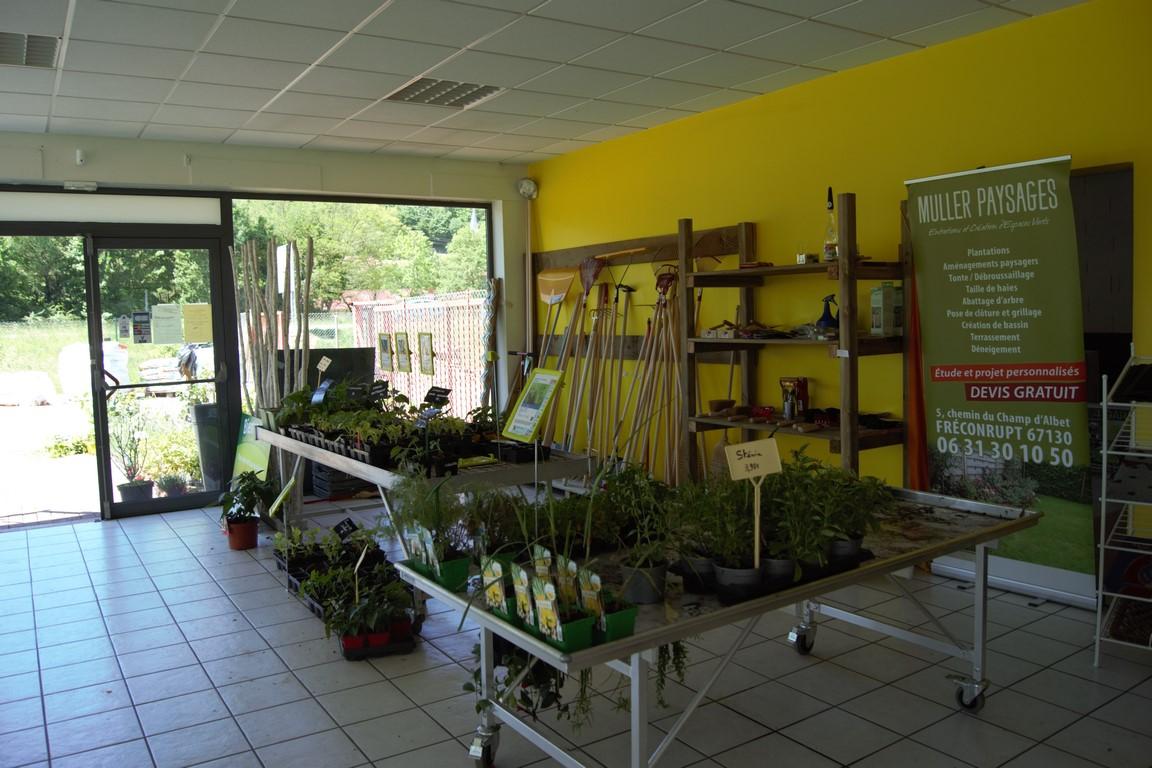 pour fleurir et planter près de Obernai